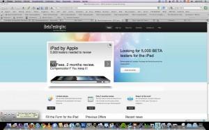 Beta Testing Inc